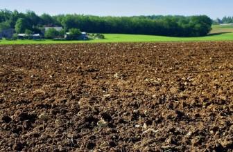 Valoriser toutes les sources d'azote organique